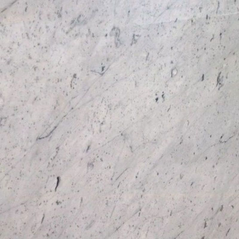 BIANCO STATUARIETTO POLISHED